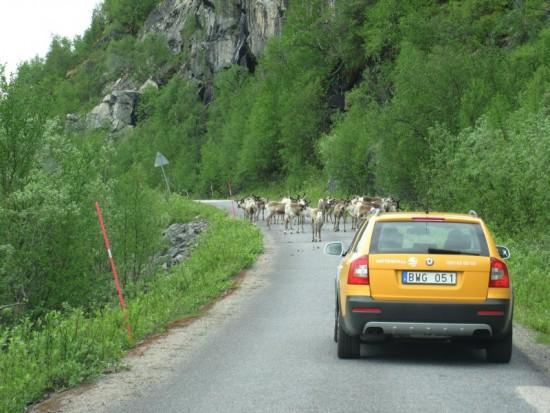 Reizen door de bergen doe ik graag, maar het komt er nauwelijks meer van.