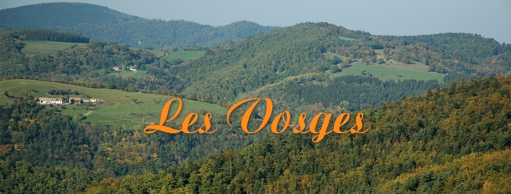Renske Cramer Creatief reizen Frankrijk landschapsfoto van de Vosges