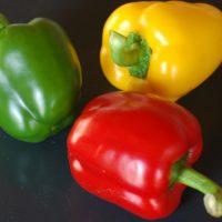 Renske Cramer Creatief artikel over voeding de nieuwste ontwikkelingen met een foto van 3 paprika's