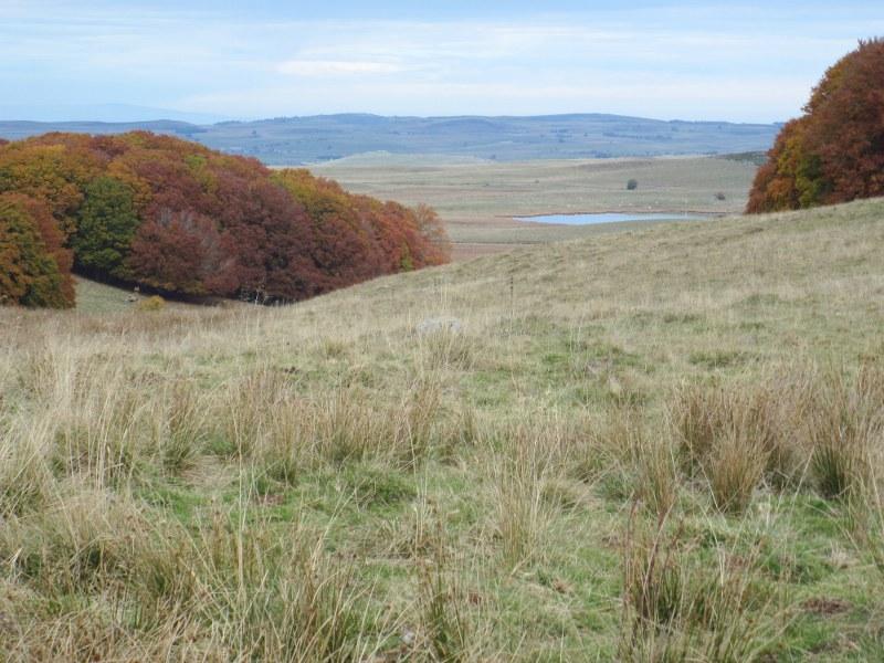 Renske Cramers foto van een landschap in de Aubrac (Frankrijk).