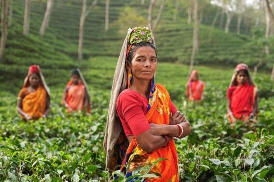 In India zijn vrouwen regelmatig het slachtoffer van seksueel geweld, vooral op het platteland.