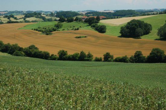 Een foto van het landschap van de Gascogne, Frankrijk.