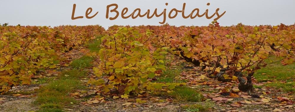 Een foto van de pagina over de Beaujolais op de site Renske Cramer Creatief