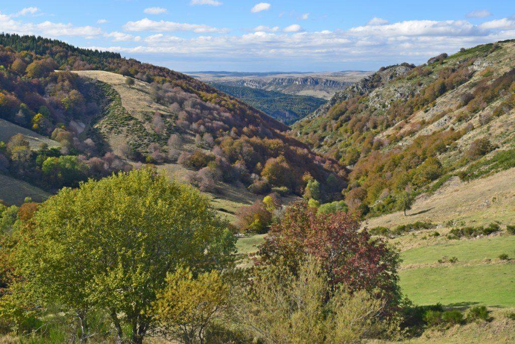 Renske Cramer Creatief foto van landschap in de Cévennes, Frankrijk
