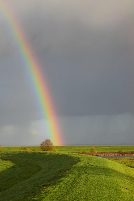 Renske Cramer Creatief sectie foto's van landschappen Renskes foto van een landschap met een felgekleurde regenboog