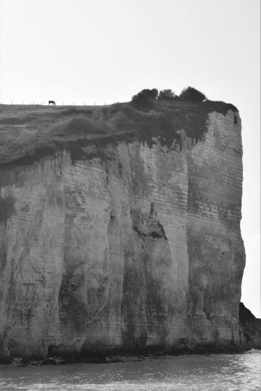 Renske Cramer Creatief foto van een klip met een paard aan de kust van de Normandie (Frankrijk)