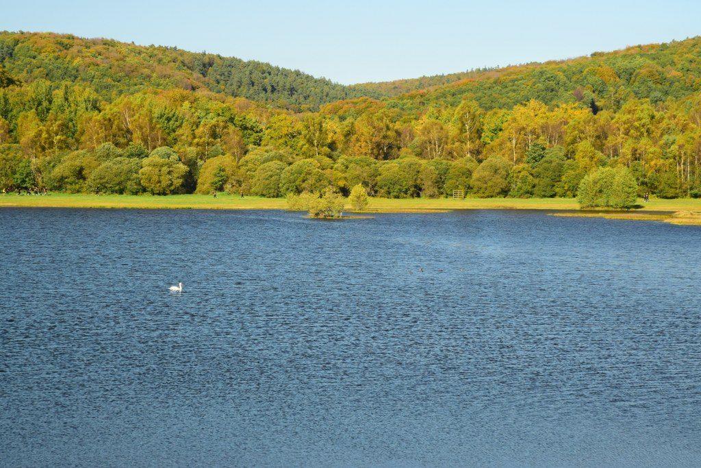 Renske Cramer Creatief foto van een herfstig landschap met een meer in de Limousin (Frankrijk)