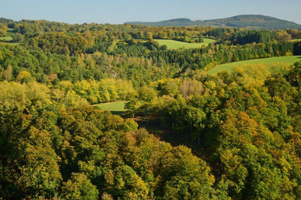 Renske Cramer Creatief foto van een landschap met herfstkleuren in de Limousin (Frankrijk)