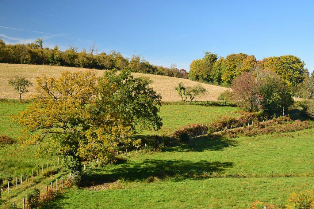 Renske Cramer Creatief foto van een herfstig landschap in de Limousin (Frankrijk)