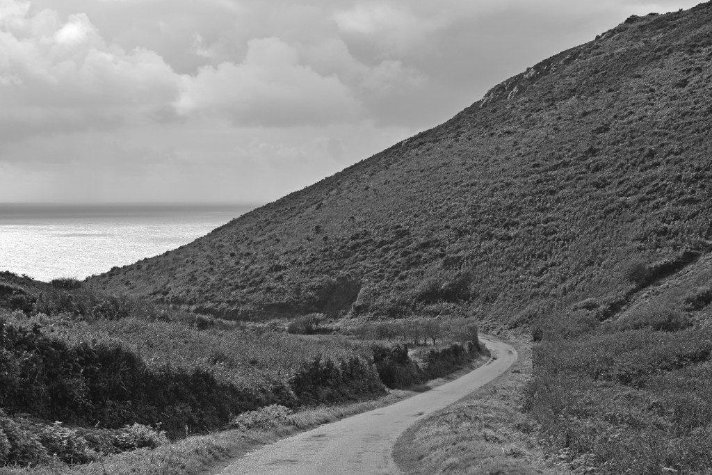 Renske Cramer Creatief zwart-wit foto's foto van een weg door hoge duinen