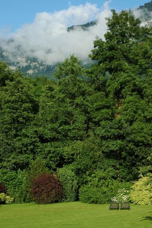 Renske Cramer Creatief artikel over chambres d'hôtes foto van een mooie tuin