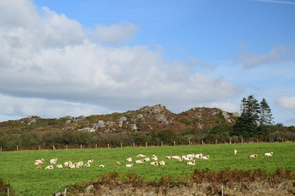 Renske Cramer Creatief reizen Frankrijk Bretagne foto van het binnenland