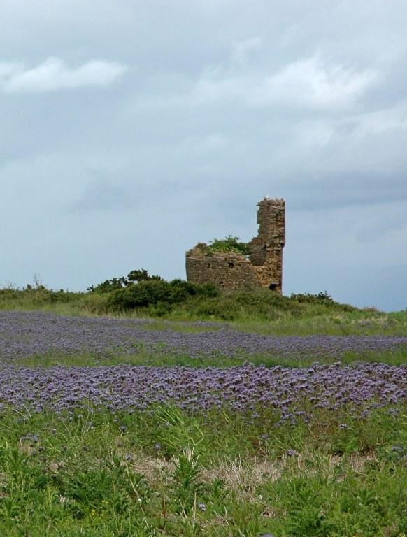 Renske Cramer Creatief reizen Frankrijk Bretagne foto van een oude toren in het binnenland